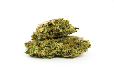 2 Fast 2 Vast Cannabis Strain Profile