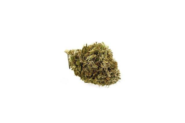 4 Kings Cannabis Strain Profile | Four Kings
