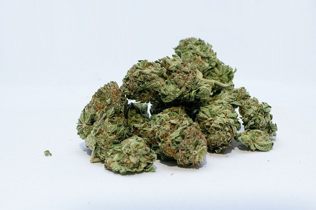 707 Cannabis Strain Profile