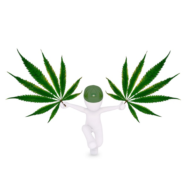 Marijuana And The Body – Cannabis Cleansing, Detox, and Testing
