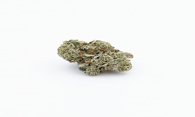 Afghan Haze Cannabis Strain Profile