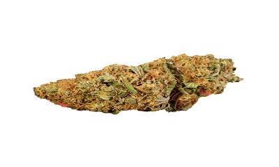 Afghan Sour Kush Cannabis Strain Profile