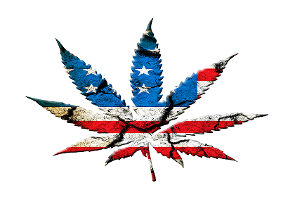 Federal Cannabis Legalization Reenters Congress With MORE Act