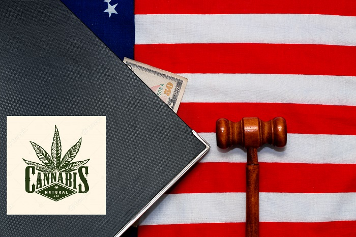 Overview Federal Cannabis Administration and Opportunity Act